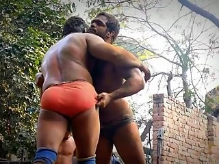 Heavy weight wrestlers in Akhara